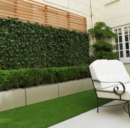 Outdoor Green Wall with Boxwood Hedges