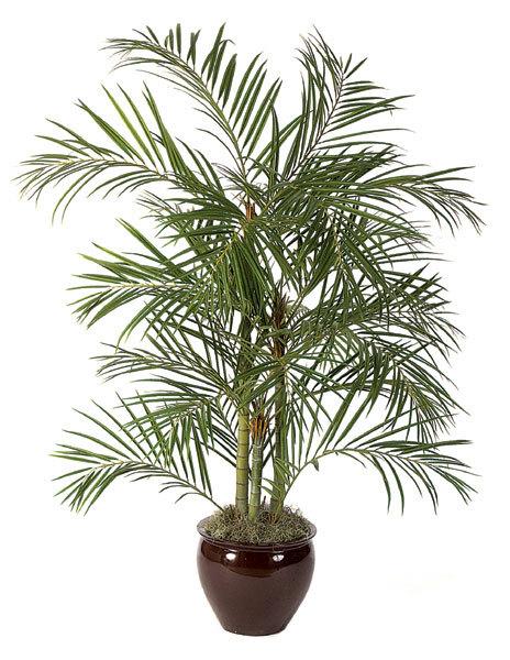 Replica Areca Palm 6 ft