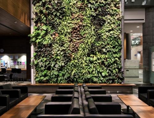 Interior Replica Green Wall shown in Waiting Area