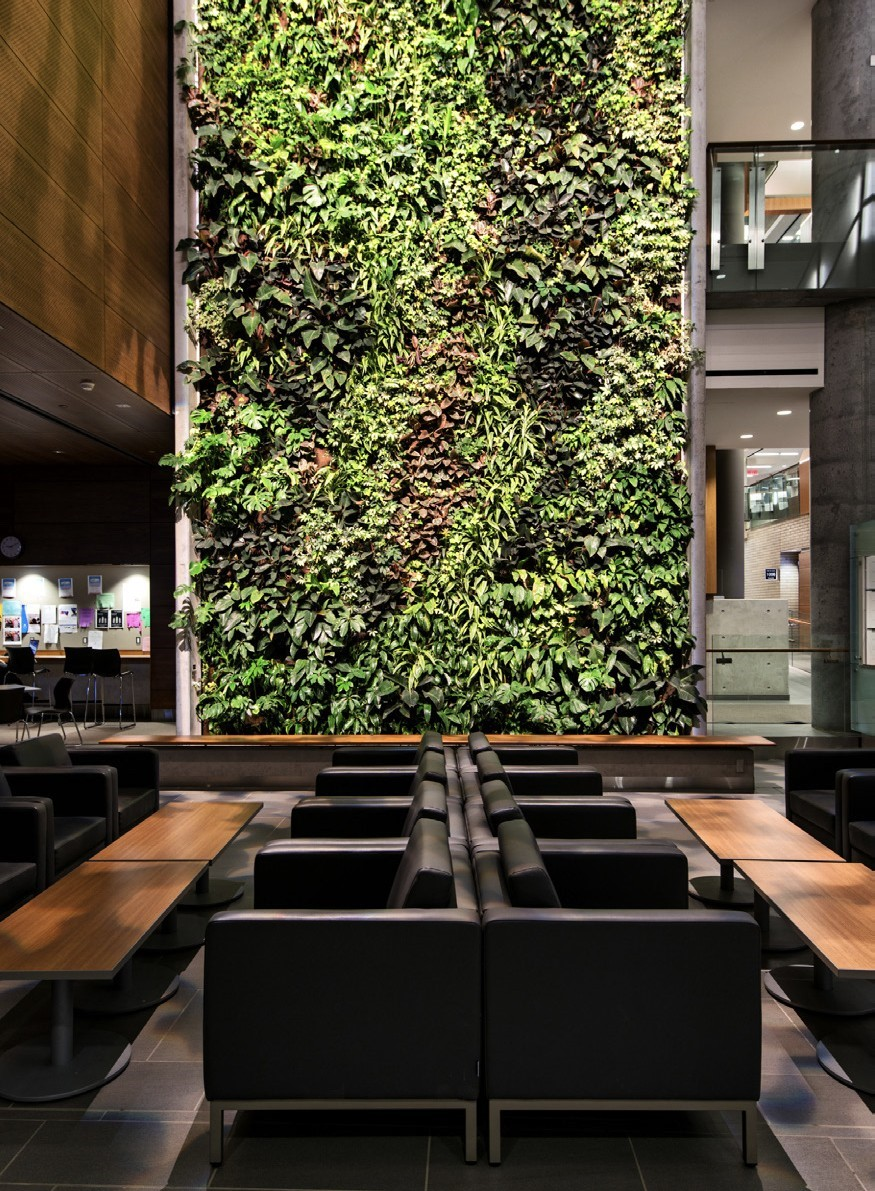 Interior Replica Green Wall Shown In Waiting Area
